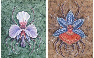 Orchnides Cervidae Lysae et Sanguis Palmis
