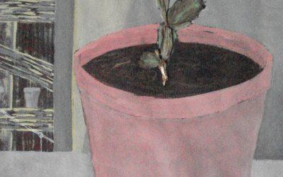 FRA CER 37_Intérieurs_l'Antre du Botaniste
